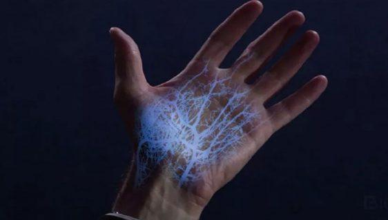 Lična karta u venskom sistemu dlana