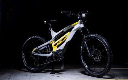 E-bicikli - najprodavanija električna vozila u narednoj deceniji
