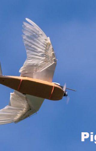 PigeonBot - Robot-ptica sa pravim perjem koja leti