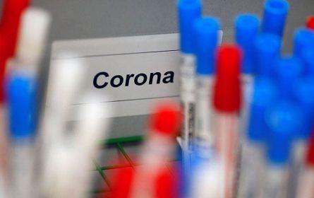 Antitijela ljudi koji su preboljeli koronavirus mogu da budu spasonosni lijek?