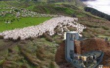 Dio bogataša iz Silicijumske doline za vrijeme pandemije zbrisali u svoje bunkere na Novom Zelandu