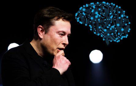 """Elon Musk otkrio nove detalje o projektu """"Neurolinku"""""""