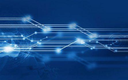 kvantna mreža