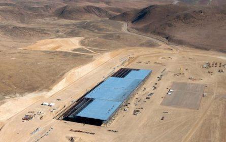 Zmije i gušteri zaustavili izgradnju fabrike električnih automobila